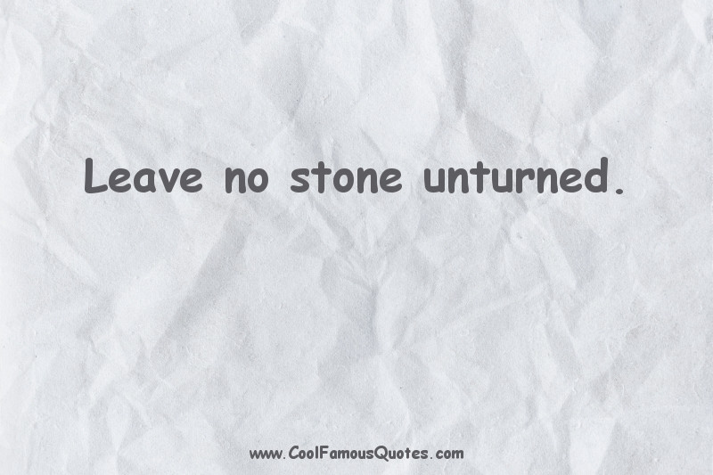 short quotes - : Leave no stone unturned.